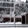Žled Postojna-Prestranek-Pivka (48)
