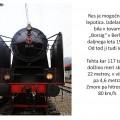 Božični muzejski vlak v Celju 7