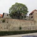 Izlet v Maribor (18)
