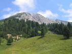 Novi datum za planinskega pohoda na Košutico