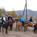Konjeniki v Mongoliji
